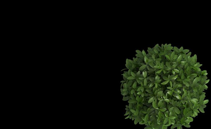 header_flowerpot.png